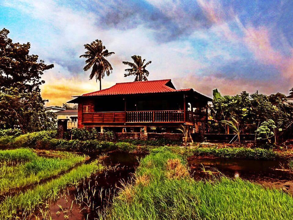 Unduh 920+ Background Pemandangan Kampung Terbaik